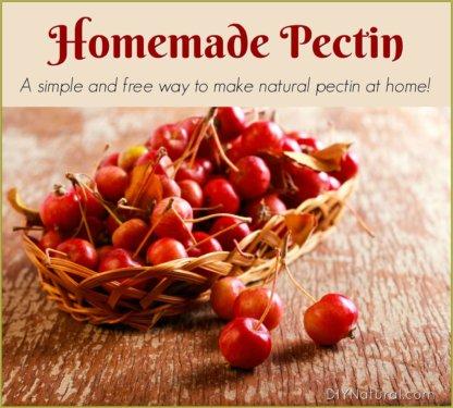 Homemade Pectin