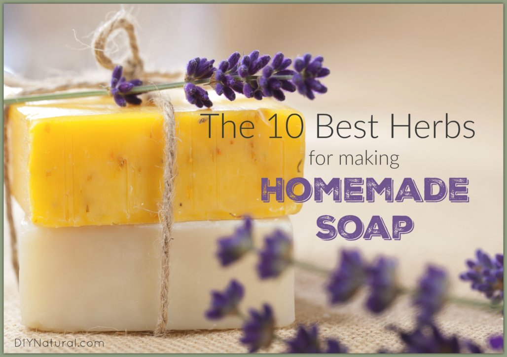 Homemade Soap Herbs
