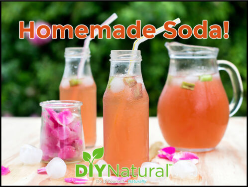 Homemade Soda Syrup Recipe
