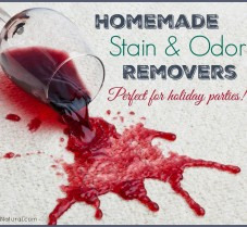 DIY Stain, Spill, and Odor Removers for the Holidays
