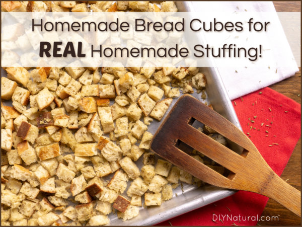 Homemade Stuffing Recipe Bread Cubes Scratch