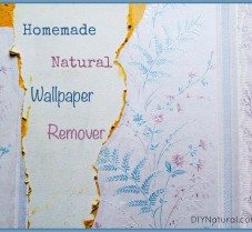 How to Make (and Use) Natural Wallpaper Remover