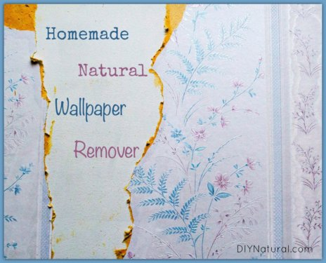 Homemade Wallpaper Remover