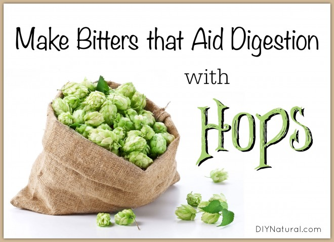 How to make bitters from hops to aid digestion