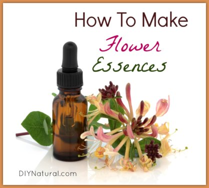 How To Make Flower Essenses