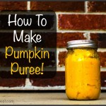 How to Make and Preserve Pumpkin Puree