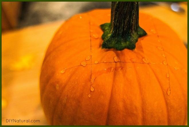 How To Make Pumpkin Puree 2