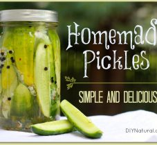 Refrigerator Pickles: A Simple Way To Pickle Cucumbers