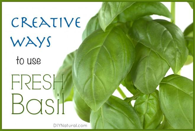 How To Use Fresh Basil
