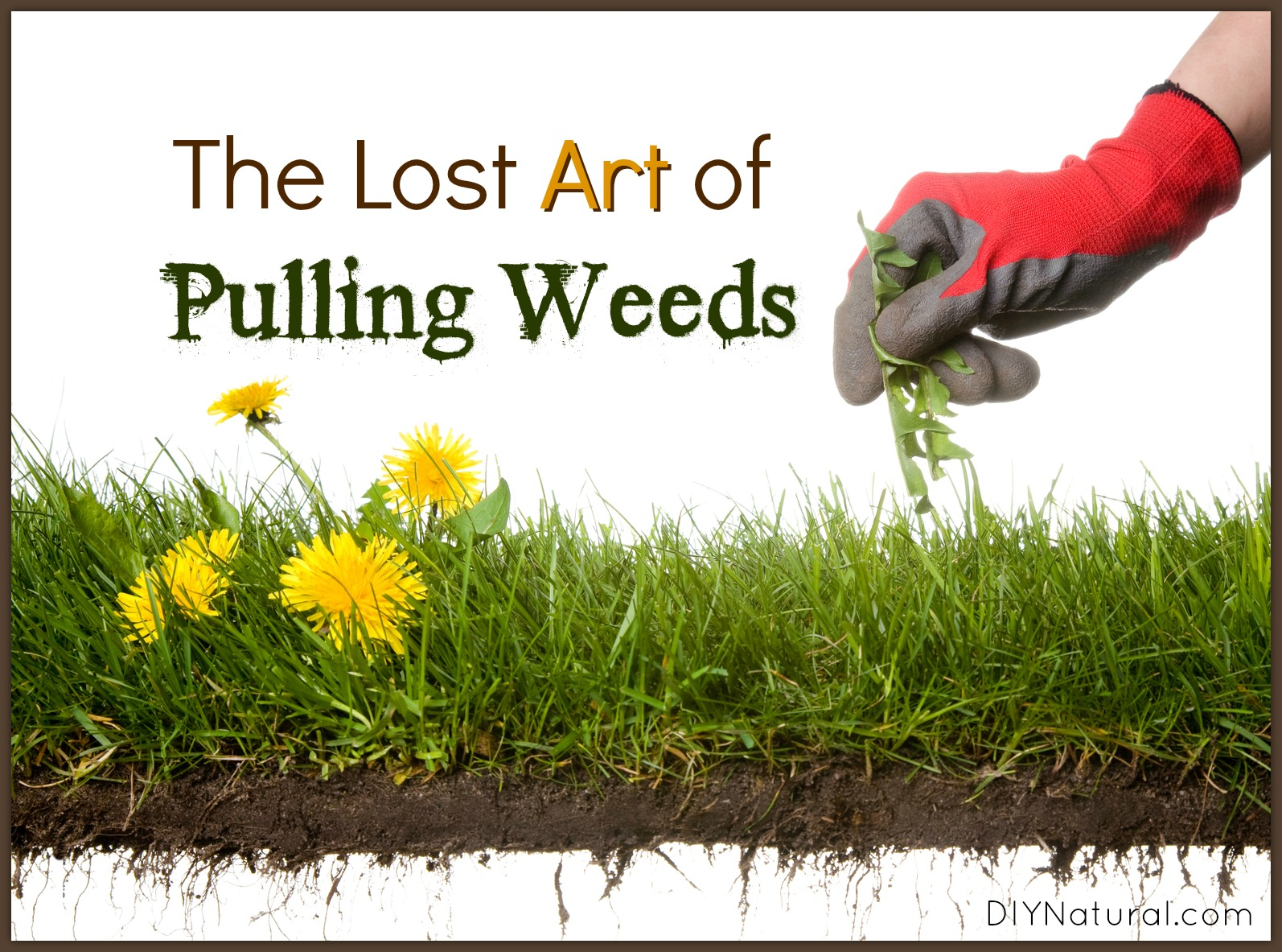 Learning How To Weed Properly Is A Skill All Gardeners Need