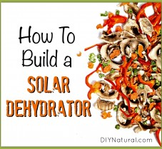 How to Build a Solar Dehydrator