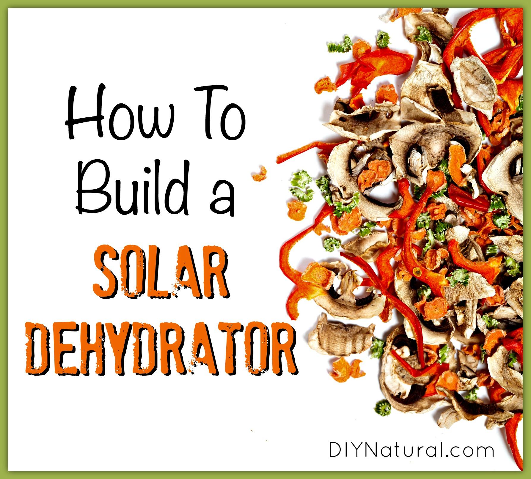 How to Build a Solar Dehydrator