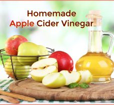 Learn to Make Your Very Own Apple Cider Vinegar