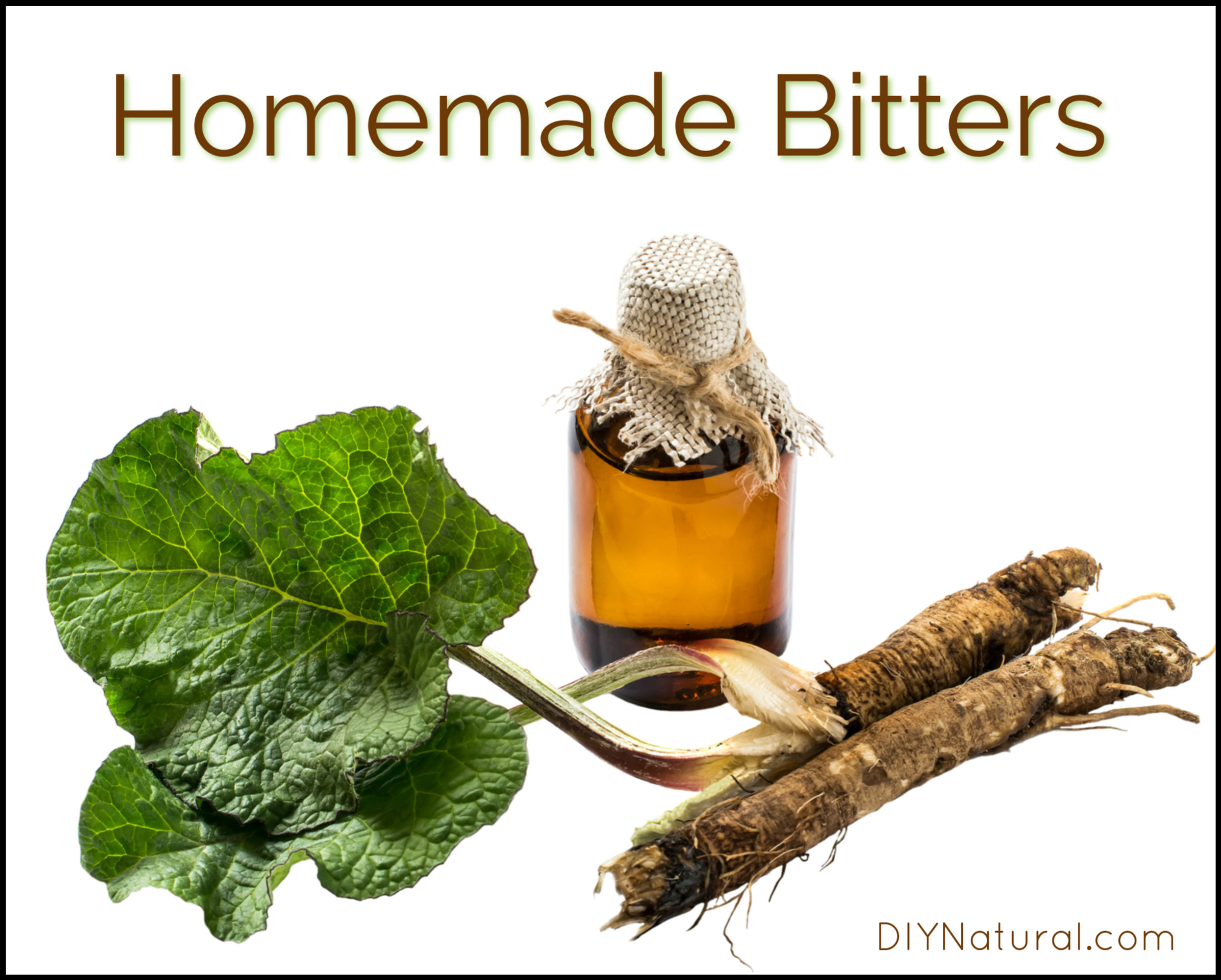 How to Make Bitters: Great As Medicine and For Use in Food
