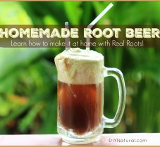 Homemade Root Beer Recipe Made with Real Roots