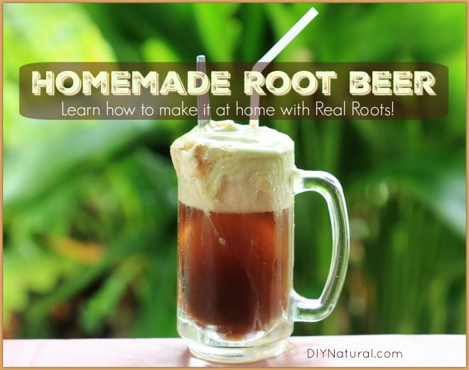 How to Make Root Beer Homemade