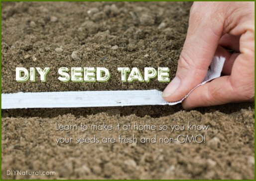 How to Make Seed Tape Homemade DIY
