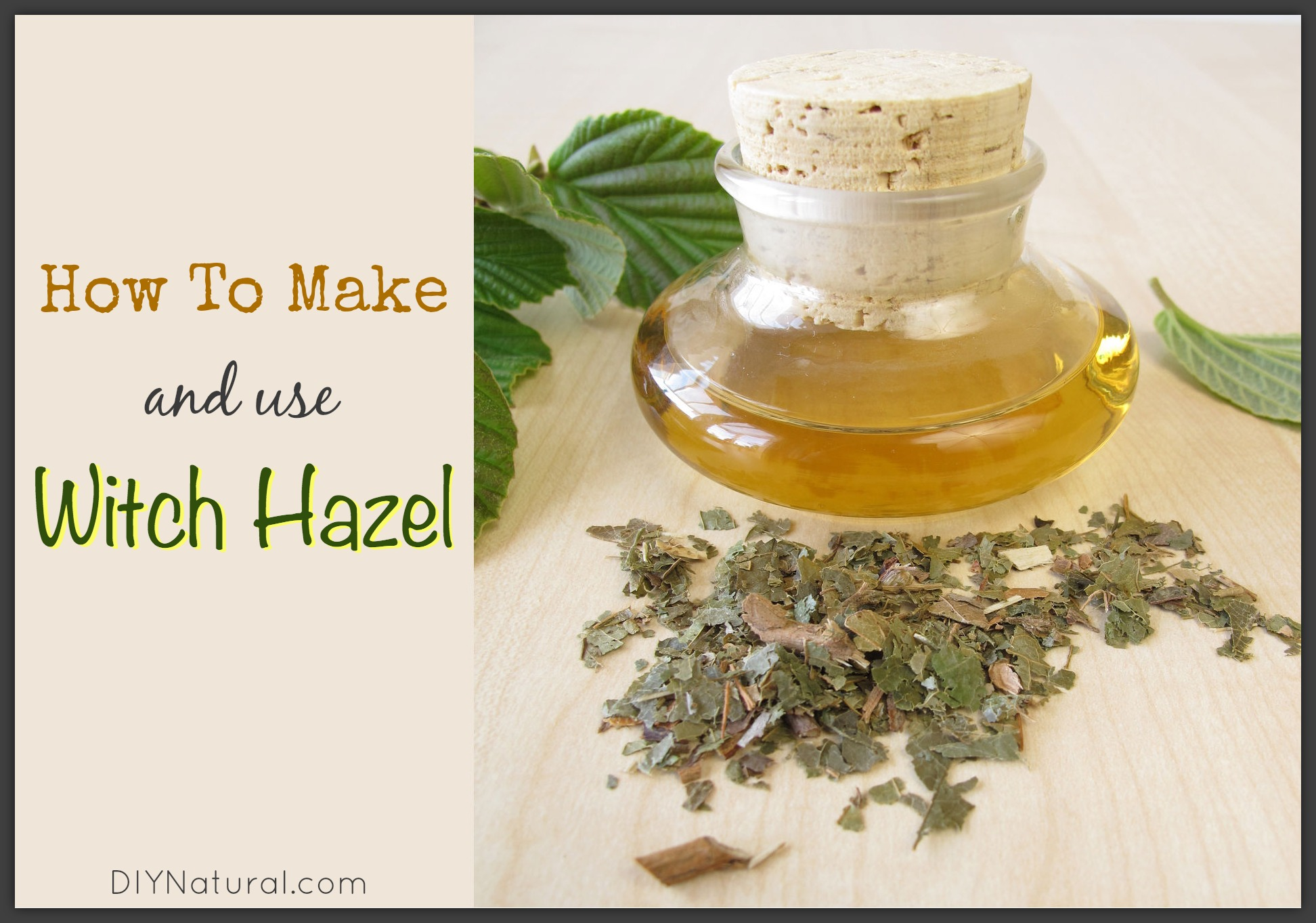 How to Make and Use Your Own Witch Hazel Tonic