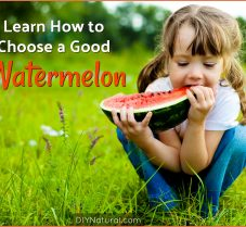 Learn How to Choose A Good Watermelon