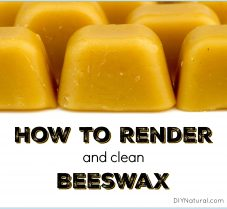 Learn To Clean and Render Your Own Beeswax