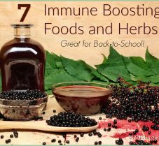 7 Immune Boosting Foods and Herbs for Back-To-School