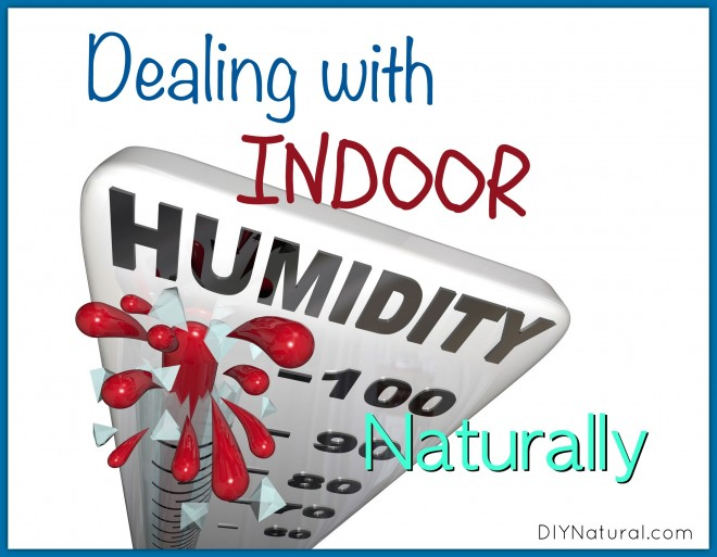Lovely Indoor Humidity In House