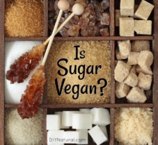 Is Sugar Vegan? Yes. Well, These Brands of Sugar Are.