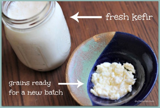 How to Make Kefir 5