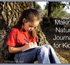 How to Make A Child's Nature Journal