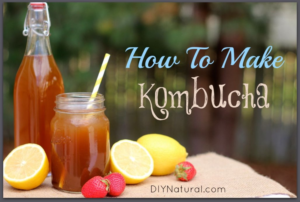 How To Make Kombucha and Recipe Variations