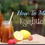 How To Make Kombucha and Recipe Variations