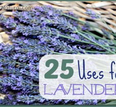 25 Ways To Use Lavender Oil and Dry Lavender