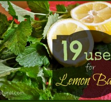 19 Lemon Balm Uses for Health Beauty and More