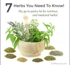 7 Nutritious & Medicinal Herbs You Need To Know