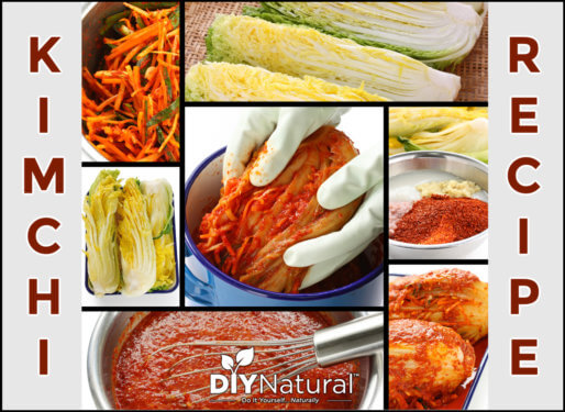 Make Kimchi Recipe