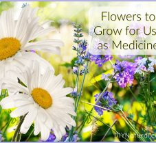 Picking, Eating, or Drying Flowers for Use as Medicine