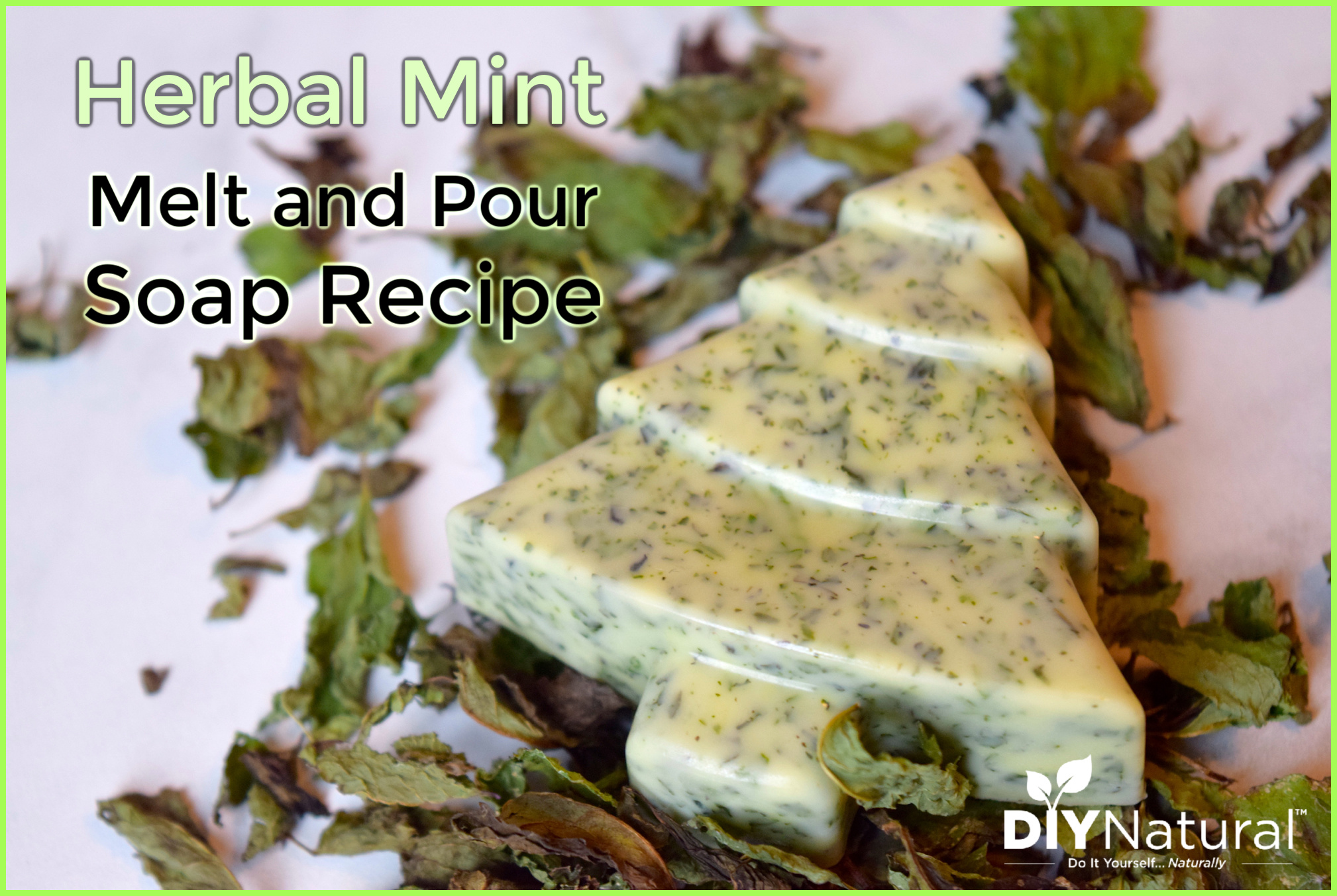 Melt And Pour Soap A Simple Diy Herbal Mint Hand Soap Recipe