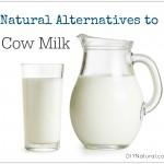 Enjoy These Natural Alternatives to Dairy Cow Milk