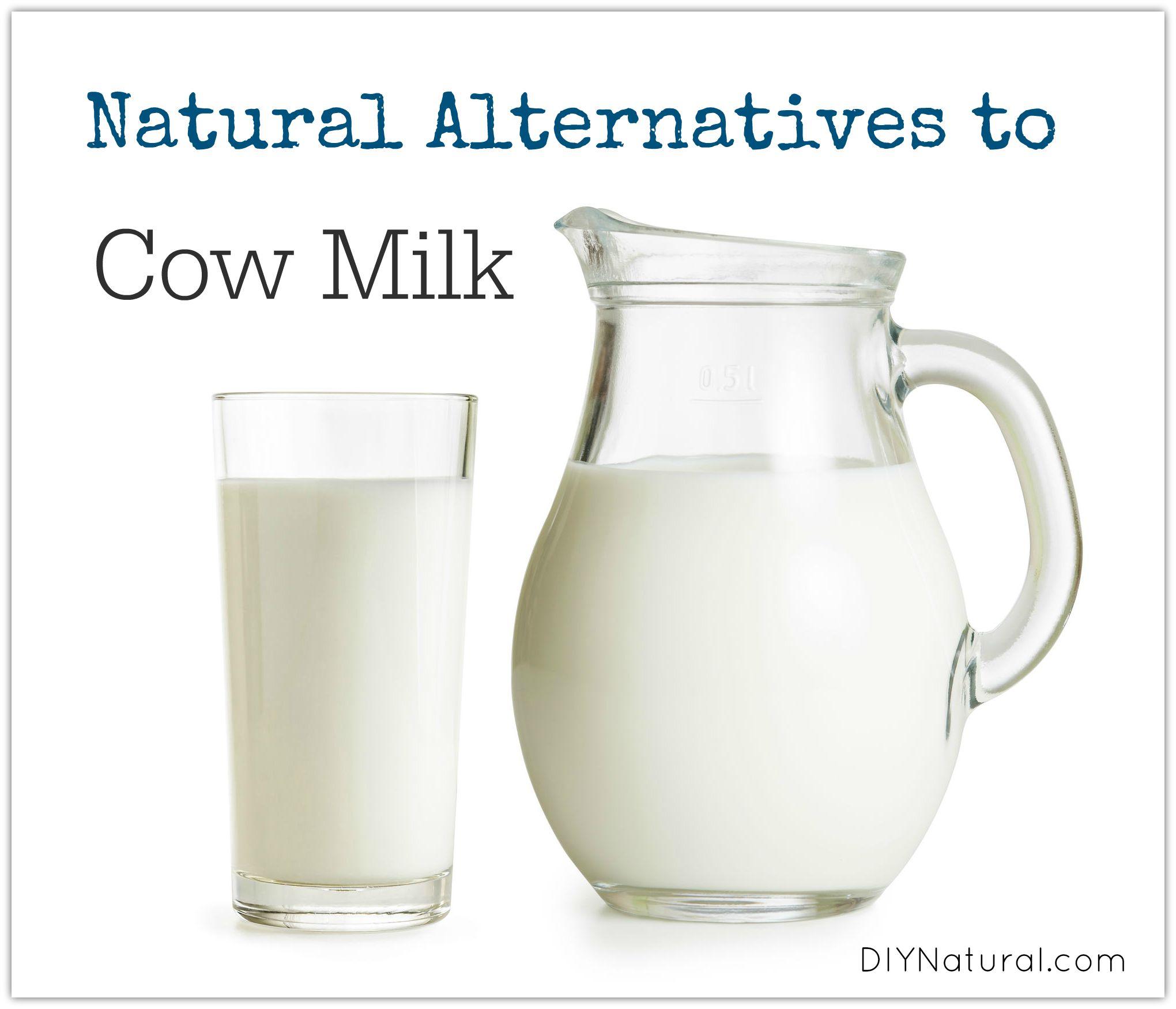 Natural Milk Substitute And Milk Alternatives
