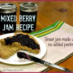 No-Pectin Jam Basics and a Mixed Berry Jam Recipe