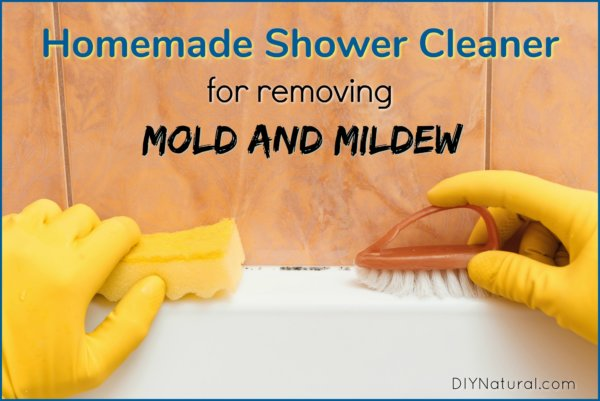 Mold In Shower Homemade Shower Cleaner To Remove Shower
