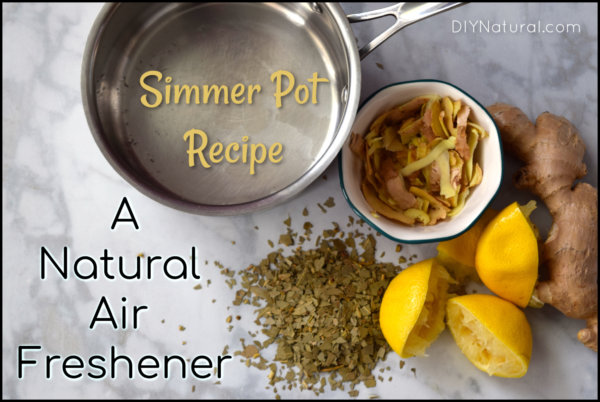 Natural Air Freshener Simmer Pot