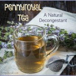 Natural Treatment for Congestion: Pennyroyal Tea