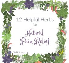 12 Beneficial Herbs to Help Relieve Pain Naturally