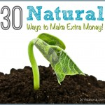 30 Natural Ways to Make Extra Money