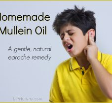 Treat Earaches Naturally with Homemade Mullein Oil
