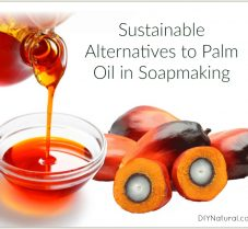 Sustainable Alternatives To Palm Oil In Soap Making