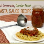Tasty Homemade Garden Veggie Pasta Sauce Recipe