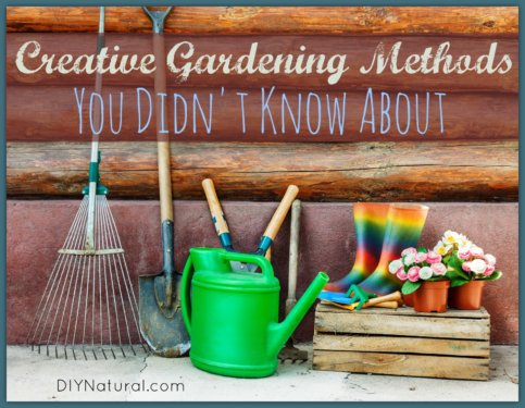 Permaculture Hugelkultur Creative Gardening