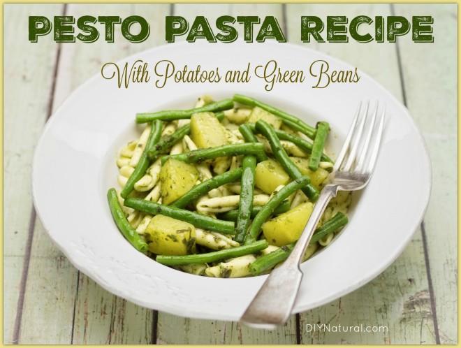 Pesto Sauce Pasta Recipe